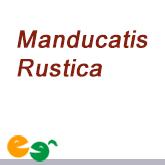 Maducatis Rustica